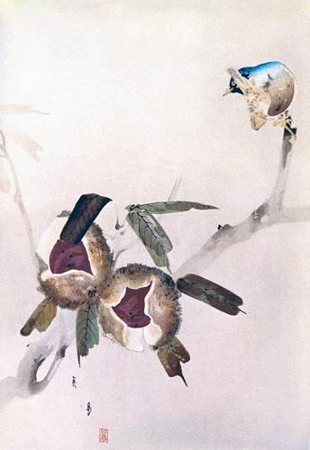 orientalische-gemaelde - Petit oiseau sur une branche de châtaignier - _Anonym China