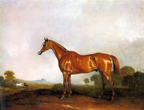 tiermalereien - A Chestnut Hunter in a Landscape - Ferneley I, John