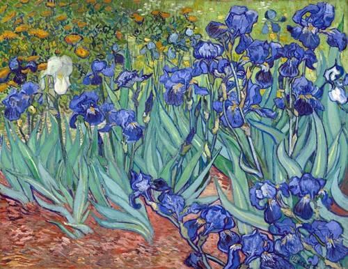 blumen-und-pflanzen - Schwertlilien (Irises), 1889 - Van Gogh, Vincent