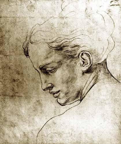 alte-karten-und-zeichnungen - Volto di giovane visto di profilo - Buonarroti, Miguel Angel