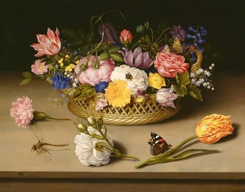blumen-und-pflanzen - Flower Still Life - Bosschaert, Ambrosius