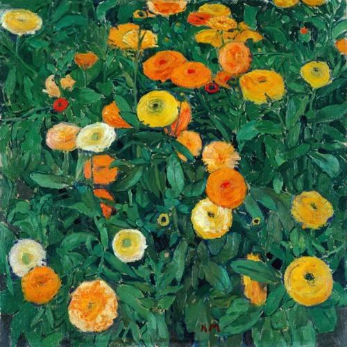 blumen-und-pflanzen - Caléndulas (Marigolds) - Moser, Kolo