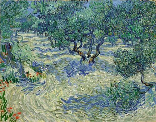landschaften-gemaelde - Olive Orchard, 1889 - Van Gogh, Vincent