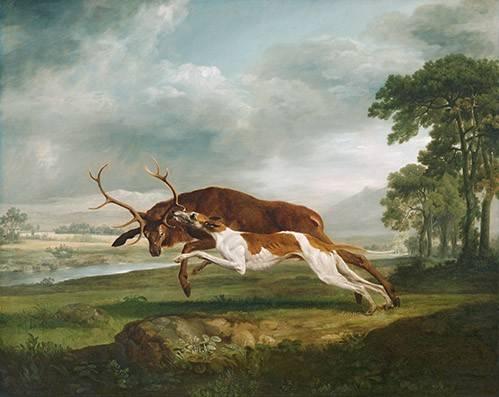 tiermalereien - Hound Coursing a Stag- (caza) - Stubbs, George