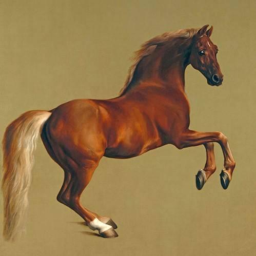 tiermalereien - Whistlejacket- (caballos) - Stubbs, George