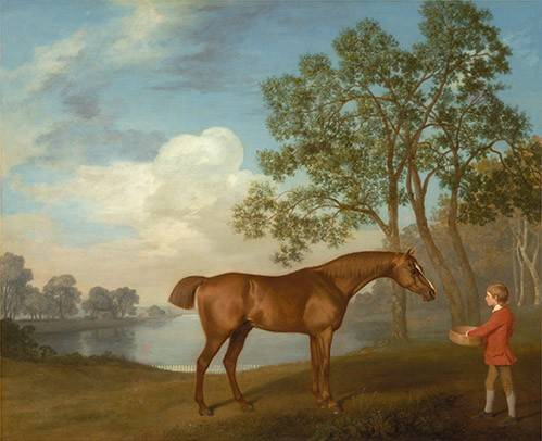 tiermalereien - Pumpkin with a Stable-lad- (caballos) - Stubbs, George