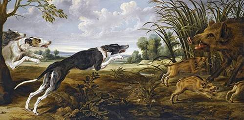 tiermalereien - Cazeria de jabalies (Caza) - Paul de Vos