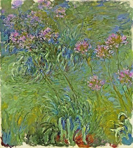 blumen-und-pflanzen - Le Parterre aux agapanthes, 1914 - Monet, Claude