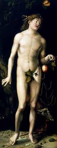 religioese-gemaelde - Adán - Dürer, Albrecht (Albert Durer)