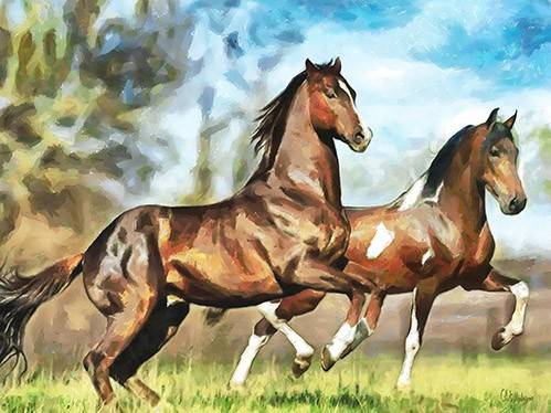 moderne-gemaelde - Moderno CM10537- (caballos) - Medeiros, Celito
