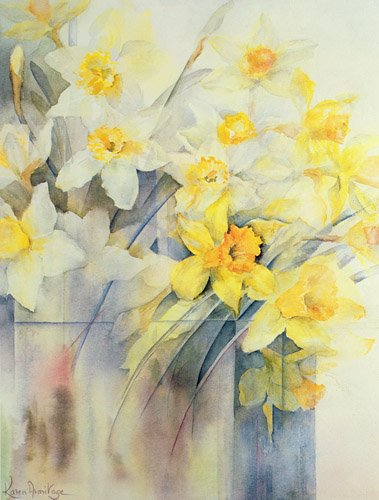 blumen-und-pflanzen - Mixed Daffodils in a Tank - Armitage, Karen