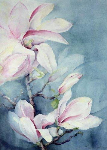 blumen-und-pflanzen - Magnolia Soulangeana (vertical) - Armitage, Karen