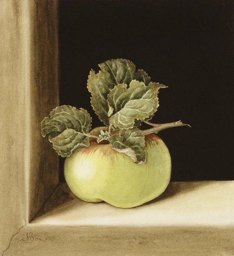 stillleben-gemaelde - Apple (w.c on paper) - Barron, Jenny