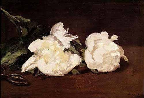 blumen-und-pflanzen - Branche de pivoines blanches et élagueur - Manet, Eduard