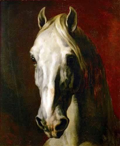 tiermalereien - Tête d'un cheval blanc - Gericault, Theodore