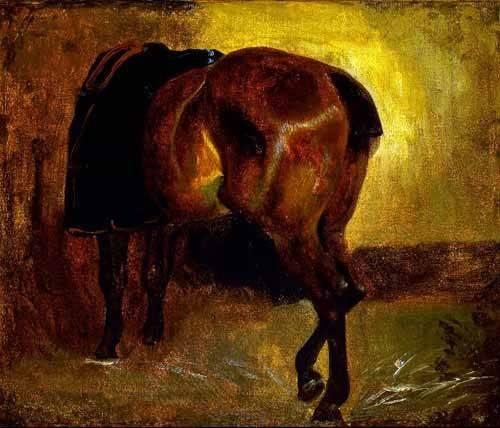 tiermalereien - Estudio de un caballo - Gericault, Theodore
