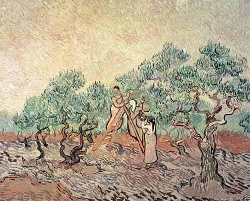 landschaften-gemaelde - L'oliveraie - Van Gogh, Vincent